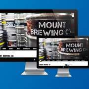 Mount Brewing Case