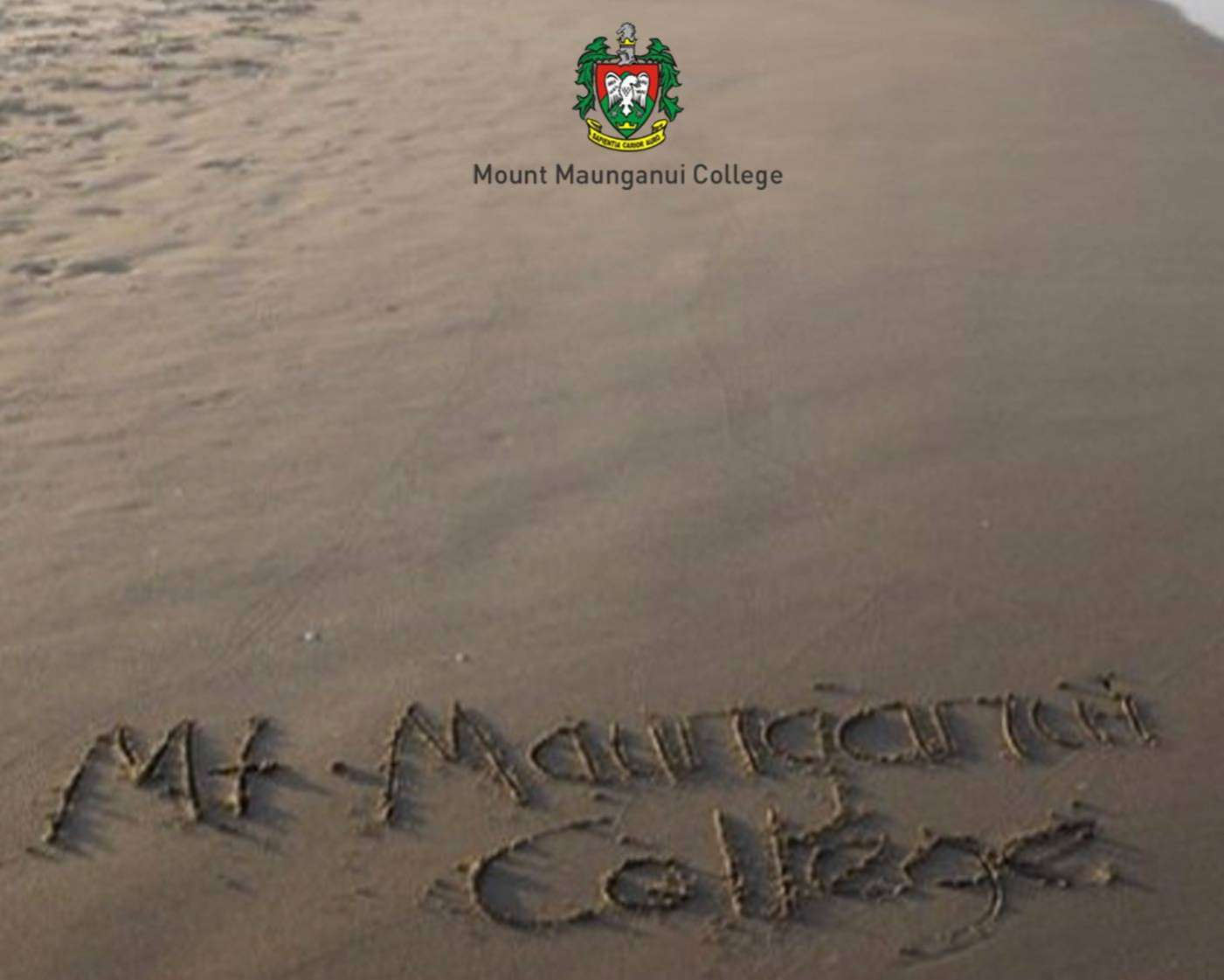 New Client: Mount Maunganui College